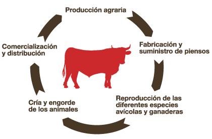 circulo productivo es Cárnicas Alejandro Goya Okelak
